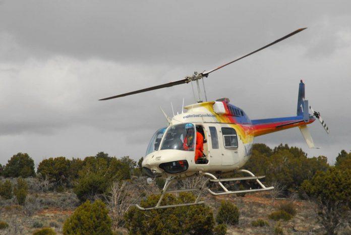 elk-and-deer-helicopter-surveys-in-progress
